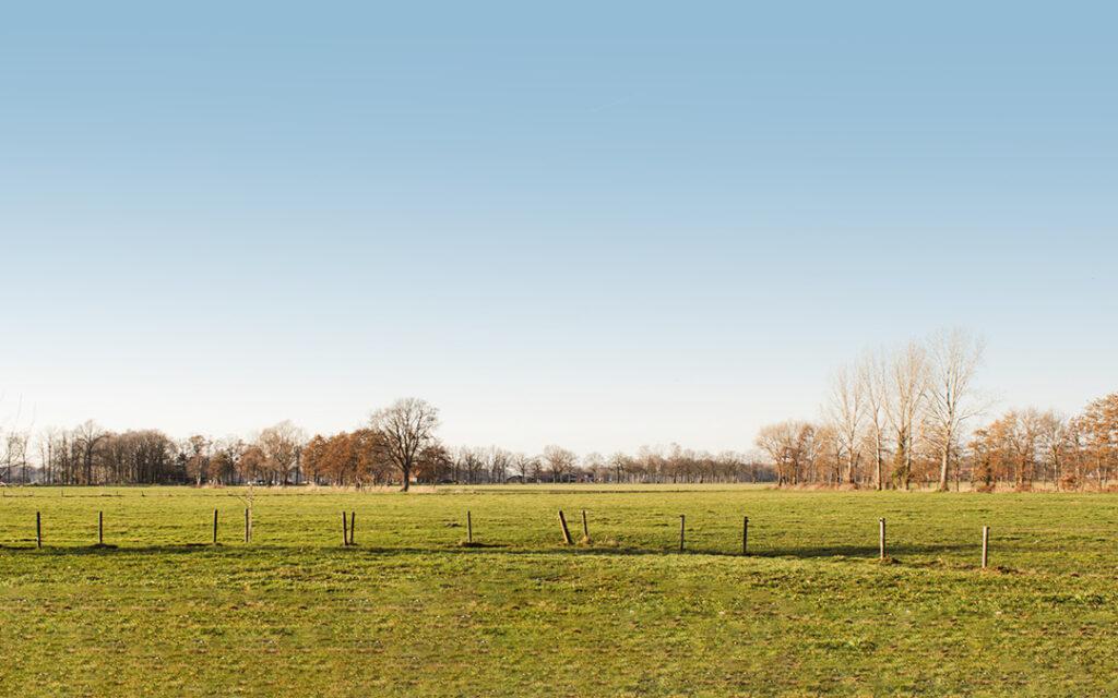 Genieten van een prachtig vrij uitzicht over de weilanden en het Achterhoekse coulisselandschap.